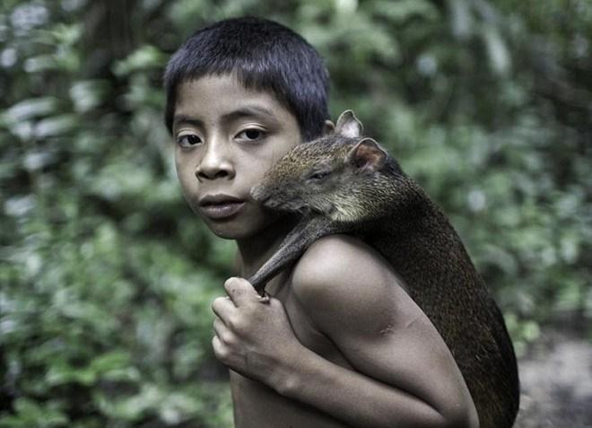Bộ tộc kỳ lạ ở Amazon nhận động vật hoang dã làm con