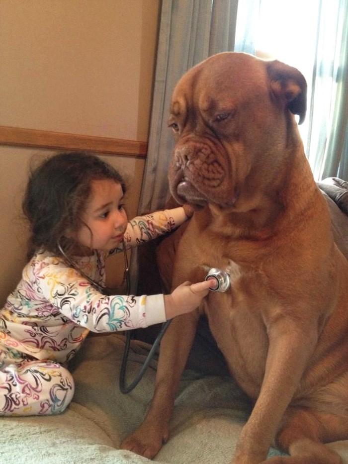 Bộ ảnh siêu đáng yêu của trẻ em và cún cưng
