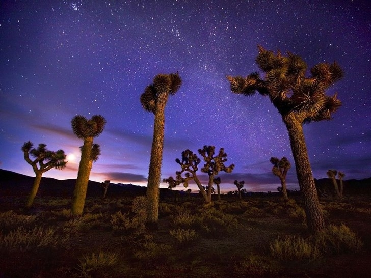 Thung lũng Tử Thần, California, Mỹ