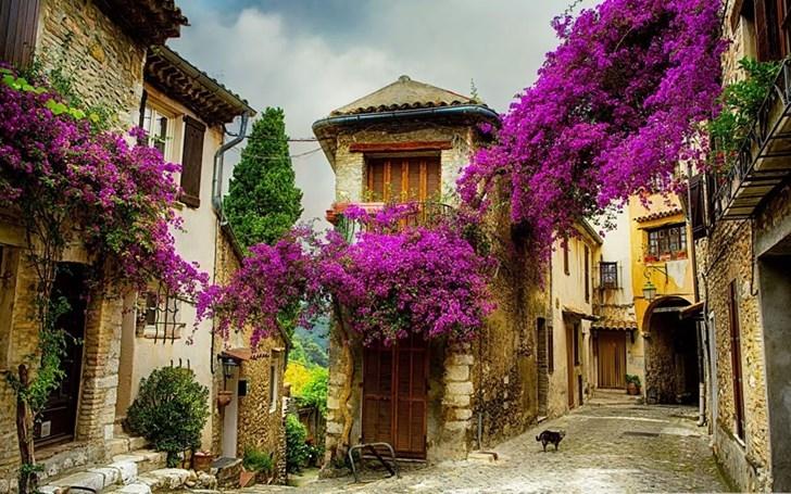 Làng nhỏ ở Provence, France