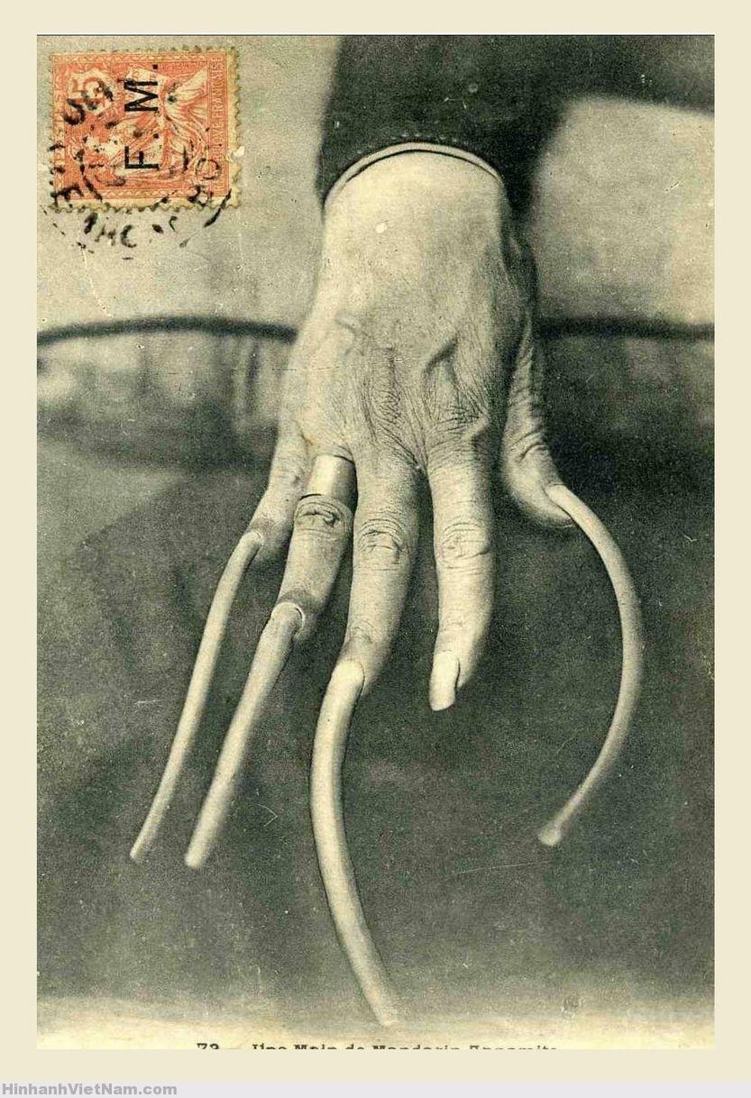 Tục để móng tay dài