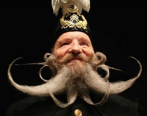 Những bộ râu điệu đà - Hình 5