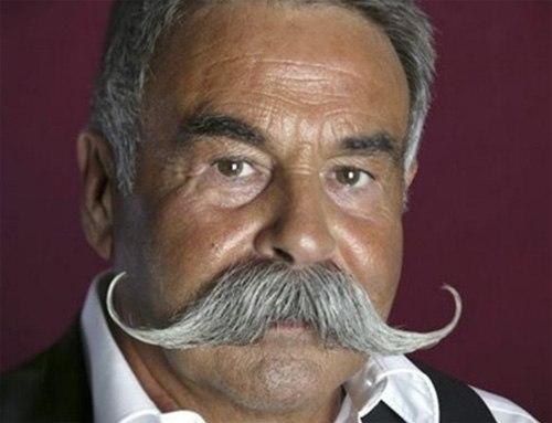 Những bộ râu điệu đà - Hình 4