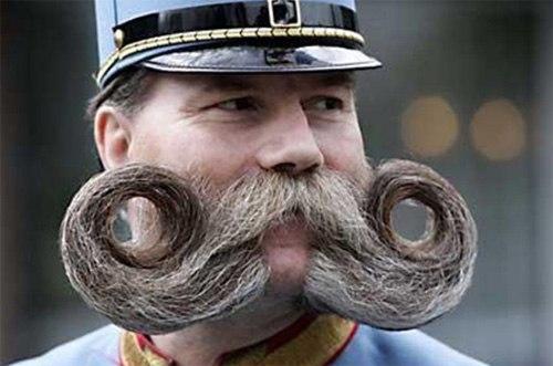 Những bộ râu điệu đà - Hình 3