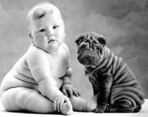 Những cặp chủ nhân và thú nuôi cực giống nhau - Hình 7