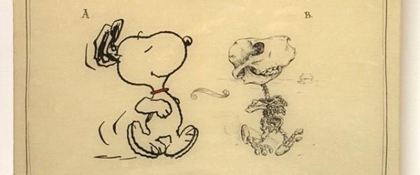 Giải phẫu học nhân vật hoạt hình - Hình 12