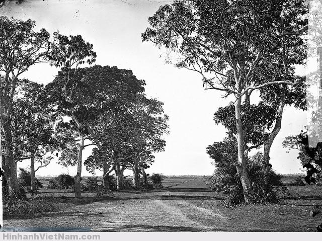 SAIGON 1867 - Đường đến Lăng Cha cả với hai hàng cây xoài