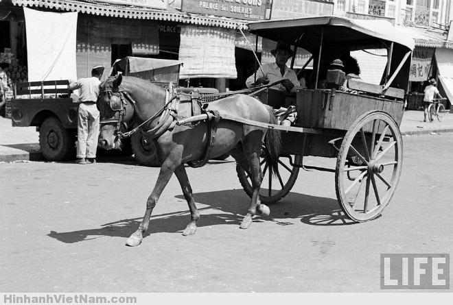 Ảnh chụp năm 1950 do Carl Mydans chụp, tại đường Phan Bội Châu ngày nay, bên hông chợ Bến Thành. Xe thổ mộ có thùng, khoang để khách ngồi, dài 1,18 m, chiều cao 1 m dùng vật liệu bằng gỗ mít, phía trên chia làm ba ô cửa sổ. Hai bánh xe làm bằng cao su và gỗ giáng hương được tiện khá sắc sảo.