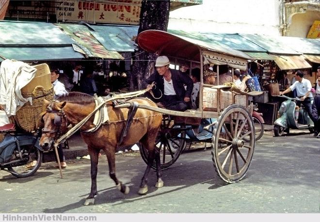 Ảnh xe ngựa đi ngang chợ Cũ đường Hàm Nghi khoảng năm 1965-1966, được chụp bởi Thomas W. Johnson. Hình ảnh chiếc xe ngựa với những tiếng kêu lách cách và cặp bánh gỗ to đã trở nên quen thuộc với người dân miền Nam xưa.