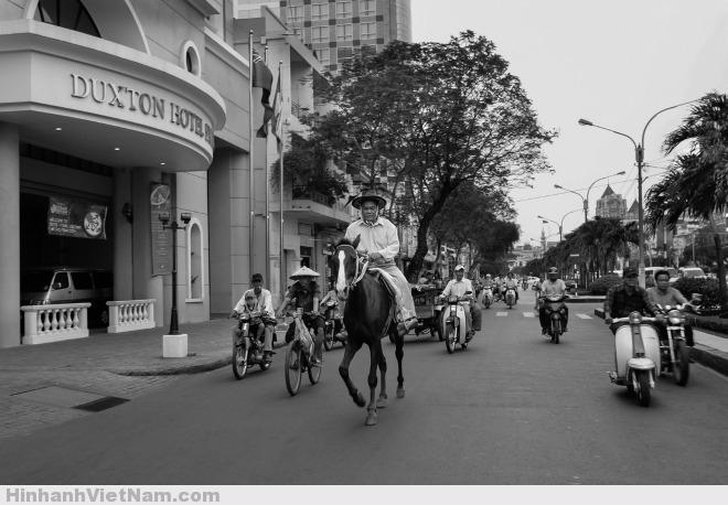 Những năm 1980-1990, xe ngựa được thay thế bởi ôtô và xe máy. Xe thổ mộ trở thành một thời quá vãng. Hiếm hoi mới có những người cưỡi ngựa trên đường phố Sài Gòn. Ảnh được tác giả Thanh Tùng chụp tại đường Nguyễn Huệ, quận 1, năm 2004.