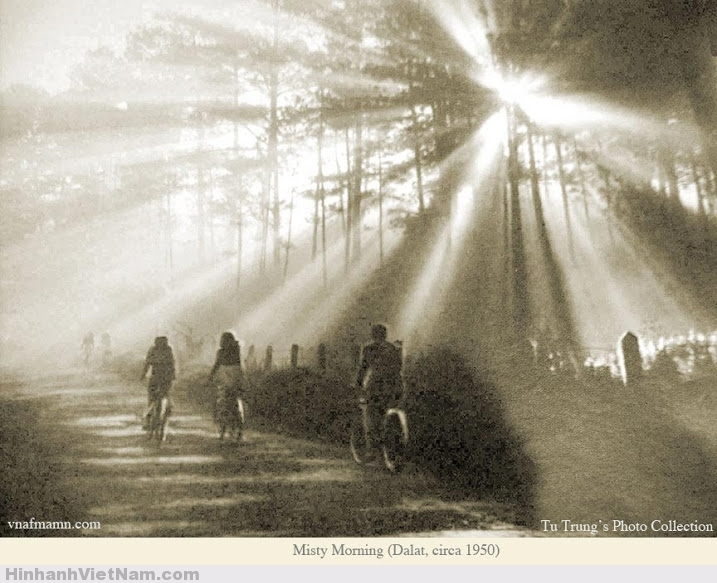 Một buổi sớm mai 1950