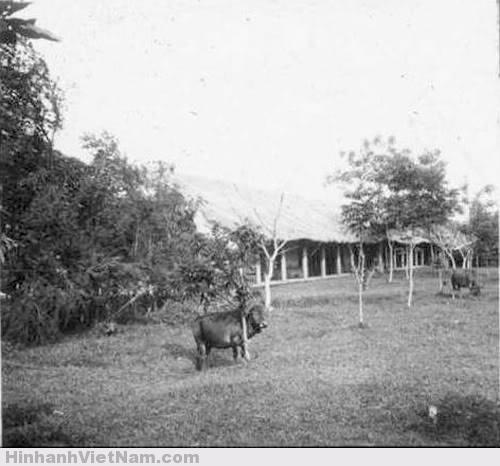 Thời kỳ mới thành lập, trường được xây dựng theo kiểu cũ, nhà tranh vách đất, quanh trường nhiều cây cối, cỏ mọc rậm rạp.
