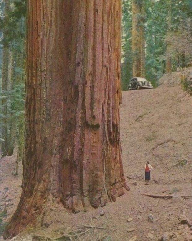 10 bức ảnh cho ta thấy con người nhỏ bé trước thiên nhiên như thế nào, xem mà không ngơ ngác mới lạ! - Ảnh 3.